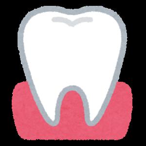 9月18日 55.8kg 歯:歯茎の痛み