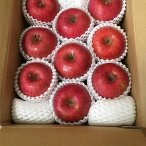 アークスからお気に入りの株主優待のりんごが届きました
