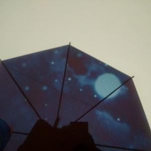 今夜は「ストロベリームーン」、赤い月と青い月。