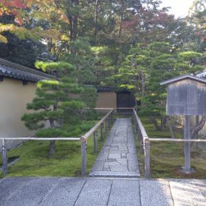 京都市 大徳寺塔頭高桐院