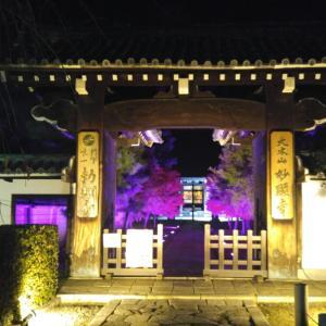 京都市 妙顯寺