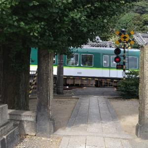 滋賀県     妙光寺
