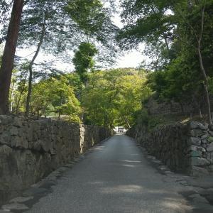京都府      興聖寺