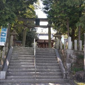 京都府     大井神社