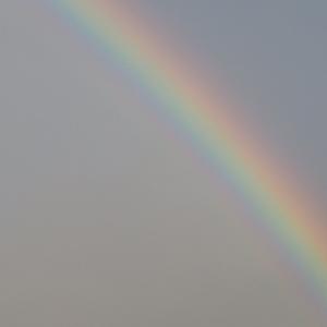 西の空に『虹』が出ていました