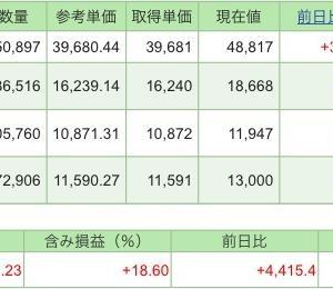 【運用実績】積立NISAの毎日積立で資産倍増を目指すブログ(~2020.11.27)