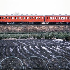 国鉄 八高線の気動車 1980年