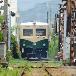 紀州鉄道 キハ603の頃