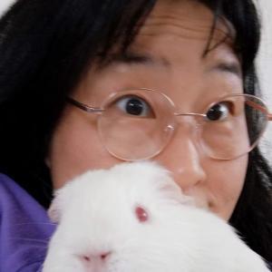 日本では女性はメガネをかけちゃいけないってニュースになってるよー。
