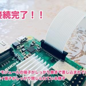 【画像多め】Raspberry pi にカメラモジュールを接続してmacから設定する手順