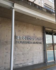 ほたるいかミュージアム~富山県滑川市~