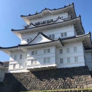 【子育て日記】小田原城に行ってきました!