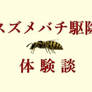 スズメバチの巣を自力駆除した方法!初期でも業者に依頼したら高い!?【体験談】