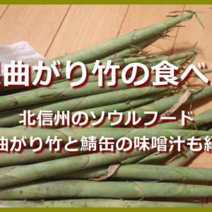 根曲がり竹の食べ方は?根曲がり竹とサバ缶の味噌汁レシピも紹介。長野には根曲がり竹が食べられるイベントもあるよ!