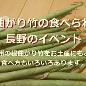 長野の根曲がり竹イベント!根曲がり竹の時期に北信州へ!根曲がり竹の下処理と食べ方も紹介します。根曲がり竹をお土産にしてお料理もどうぞ。