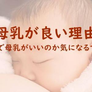 母乳が良い理由5つ!母乳で育てると経済的にも助かる?母乳はなぜ良いのか?