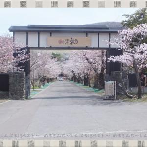 【小樽】趣きのある「宏楽園」の庭園を散策!桜も見頃でした☆