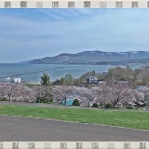 【小樽】観光・花見スポット「手宮公園」を散策☆桜と海を眺めながらお弁当も◎