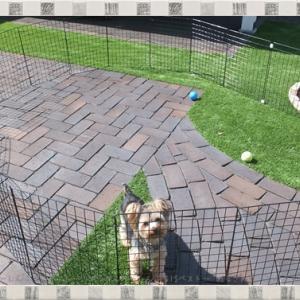【DIY】100均の材料で「ドッグラン」を手作り♪愛犬を庭で自由に遊ばせたい♪