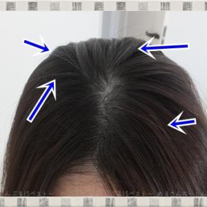 【口コミ】ちらほら「白髪」をササッと隠す☆お出かけ前に簡単に出来るプチプラ「白髪かくし」の使用レビュー☆