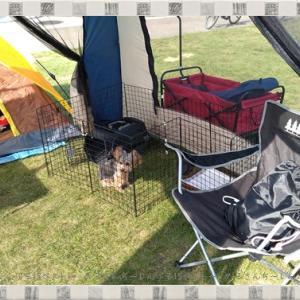 【豊浦】ペット可の海水浴が出来るキャンプ場☆豊浦海浜公園の利用口コミ☆ペット連れキャンプ♪
