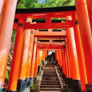 【京都】今でしょ!伏見稲荷大社の千本鳥居