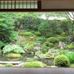 【京都】額縁庭園「契心園」を愛で、旧理覚院庭園を楽しむ|実光院