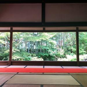【京都】宝泉院① 鶴亀庭園と額縁庭園・盤桓園(ばんかんえん)|庭園めぐり