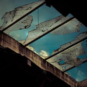 フラグメントとしての物語/世界/猫【ネコメンタリー 「岸 政彦とおはぎ」】