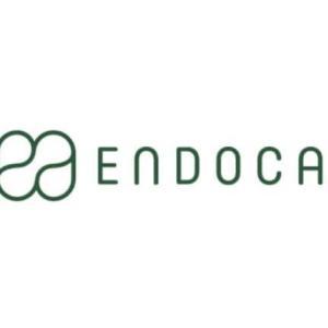 『エンドカ(Endoca)』とは、どんなCBDオイルのブランド?