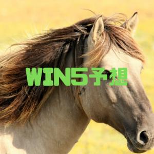 WIN5予想 2019.11.10 頭数が多いレースばかりで難解か