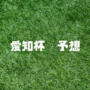 愛知杯予想2021 去年は小倉開催、中京ハンデ長距離は荒れる!