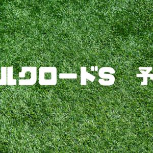 シルクロードS予想2020 去年は3連単24万馬券、高配当を狙え!
