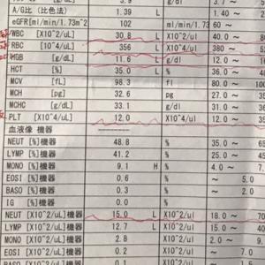 2019/3/6〜ゼロックス療法3クール目始まった〜