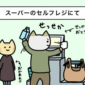 せっかちなおとうネコ3