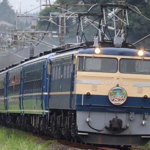 【夏休み】珍しめの国鉄型やちょっと変わった特急電車を撮影してきた。