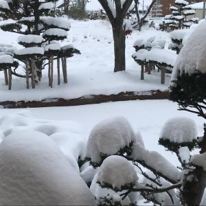 今シーズン最初の雪上ポタ