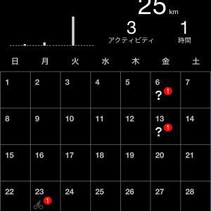 走行記録【2020年11月】