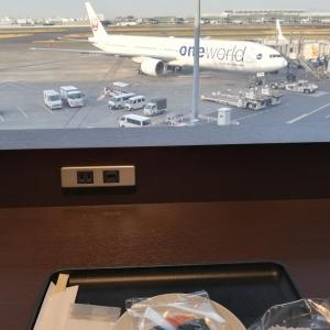 【2020 JAL 09 HND→OKA part2】南国にある毒男には無縁の世界 (2020/03/21 土)