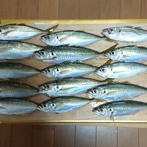三月上旬の釣り