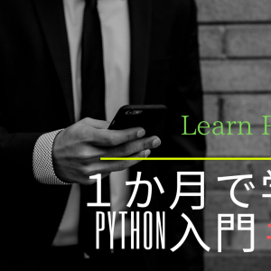 python入門#4【ファイルのプログラムの実行】