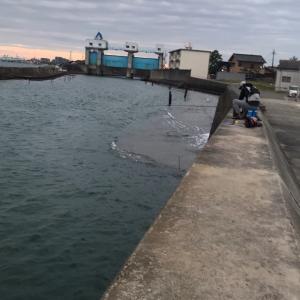 久しぶりに大物釣れた!大野漁港!