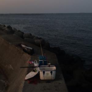 大野漁港 フカセ釣り、キターーーー!