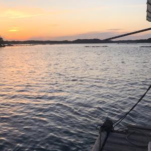 西尾渡船 筏釣り 最高です