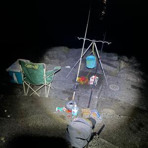 大野海岸 カレイ釣り❗️