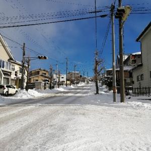今年の八戸は雪がヤバい