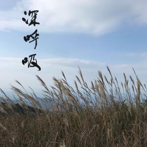 心に寄り添うメッセージ ㊱ 深呼吸 / 京都 / 習い事 / 書家