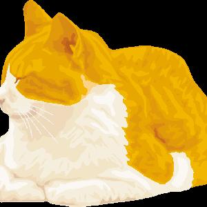 眠りかけている猫のイラスト