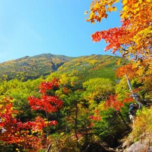 秋冬の母子キャンプの防寒!快適に過ごせる秋冬キャンプの過ごし方