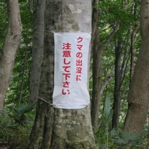帯広の中心部近くに熊出没!熊の駆除に対して北海道民として思うこと